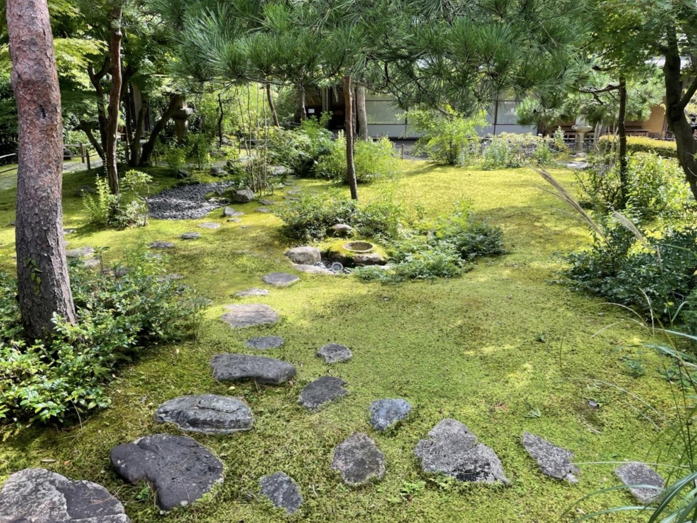 鎌倉を苔目線で歩いてみませんか?
